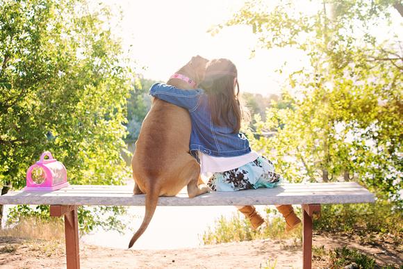 pet photos, pet photography, pet holiday photos, pet Christmas cards, Park City, Utah, Liz Dranow Photography, Park City Pet Photography, dog photos, dog photography, Ogden dog photography